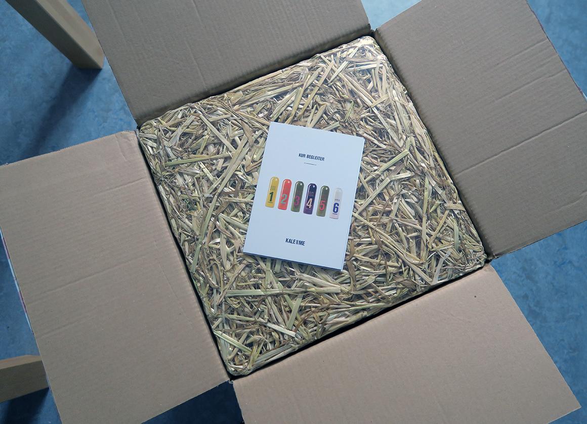 kaleandme saftkur 3 tage paket auspacken review