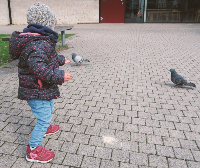 Babyupdate 16 Monaten auf Taubenjagd