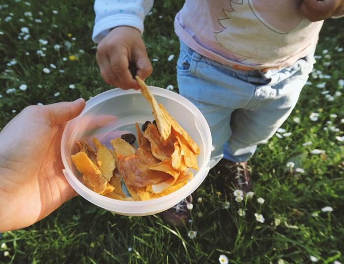 Gesunde und zuckerfreie Snacks für Kleinkinder - Trockenfrüchte #alternativen #vegan