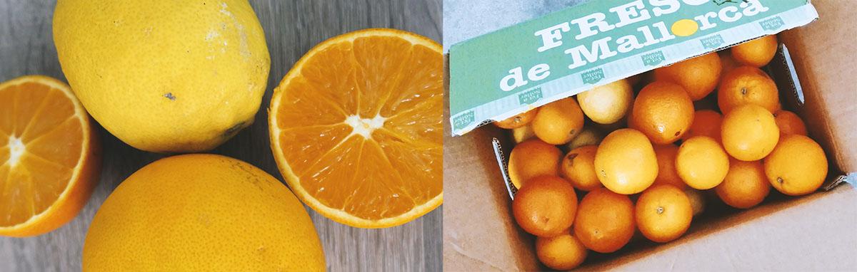Bio Orangen günstig online bestellen - Spanien Mallorca Fet a Sóller gratis Versand