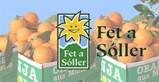Fet a Sóller – Bio-Orangen, Zitrusfrüchte, Mandeln & Co. aus Mallorca