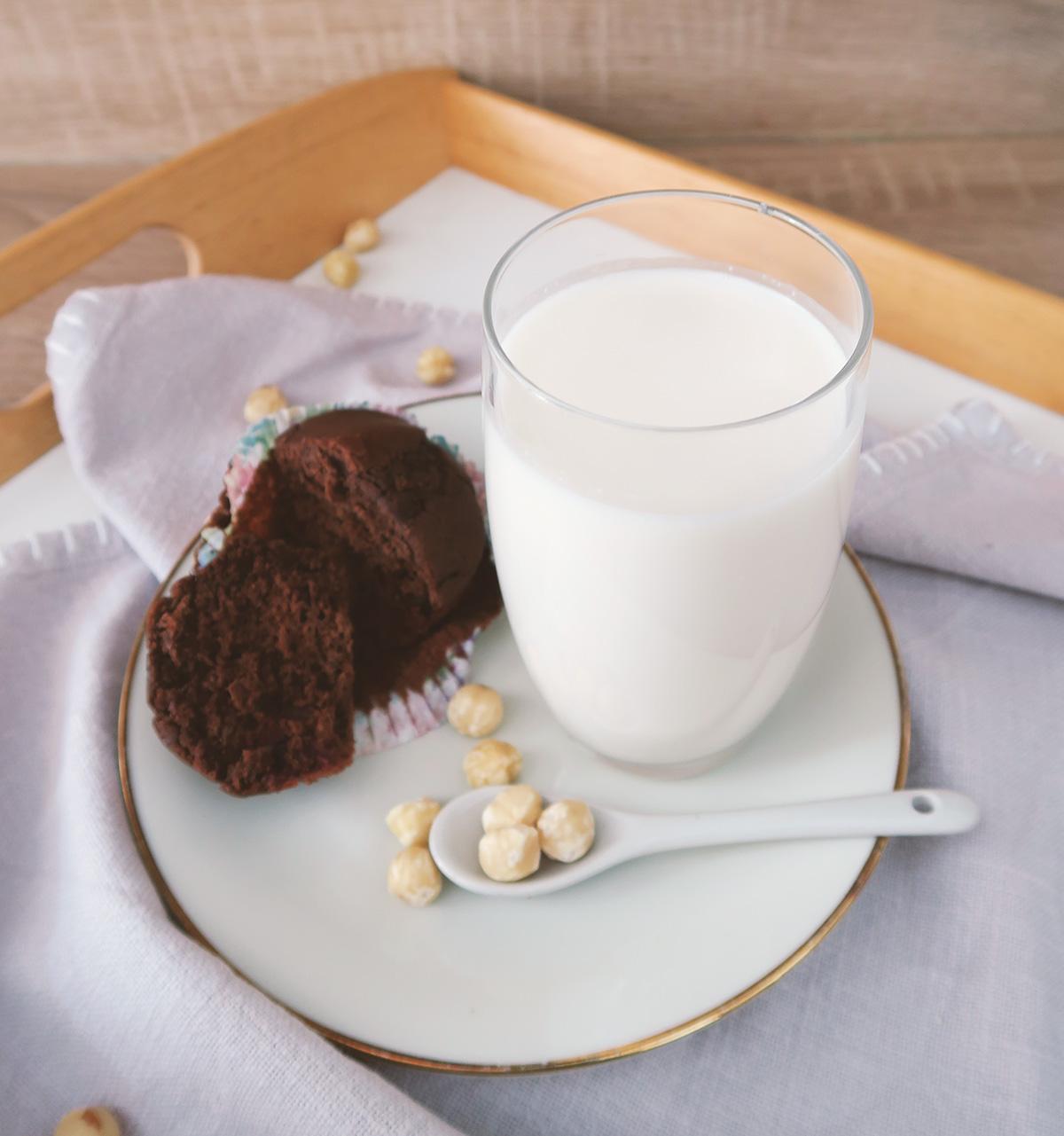 Rezept für Haselnussmilch selber machen - schnell, einfach & günstig. Zudem Tipps, wie man Nussmilch haltbar macht und was man alles aus Nussresten (Trester) anstellen kann. #diy #vegan #gesundheit
