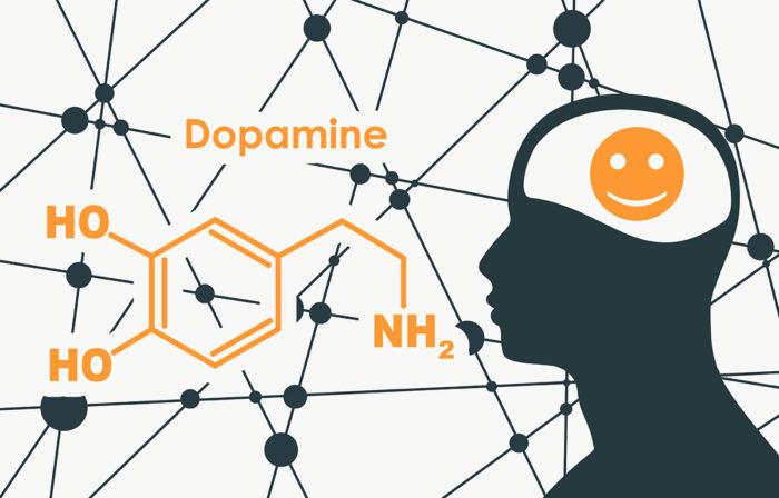 Dopamin-Kicks oder der wahre Grund, warum wir nicht aufhören können Zucker zu essen #zuckersucht #zuckerfrei